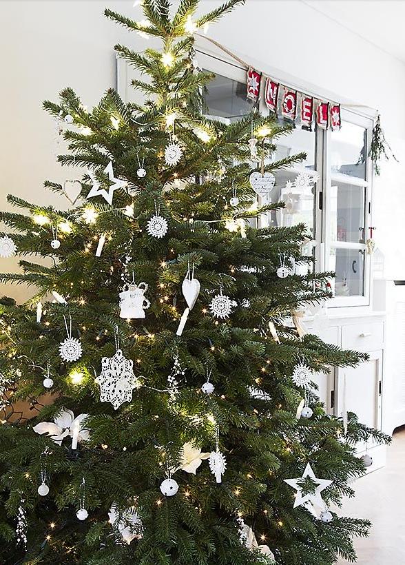 クリスマスツリーと言ったら、もみの木。